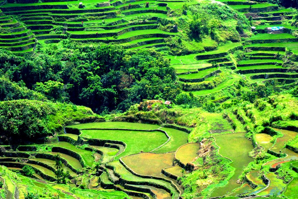 banaue rice terraces Road trip from banaue public market to batad rice terraces takes approximately 30 minutes road read more.