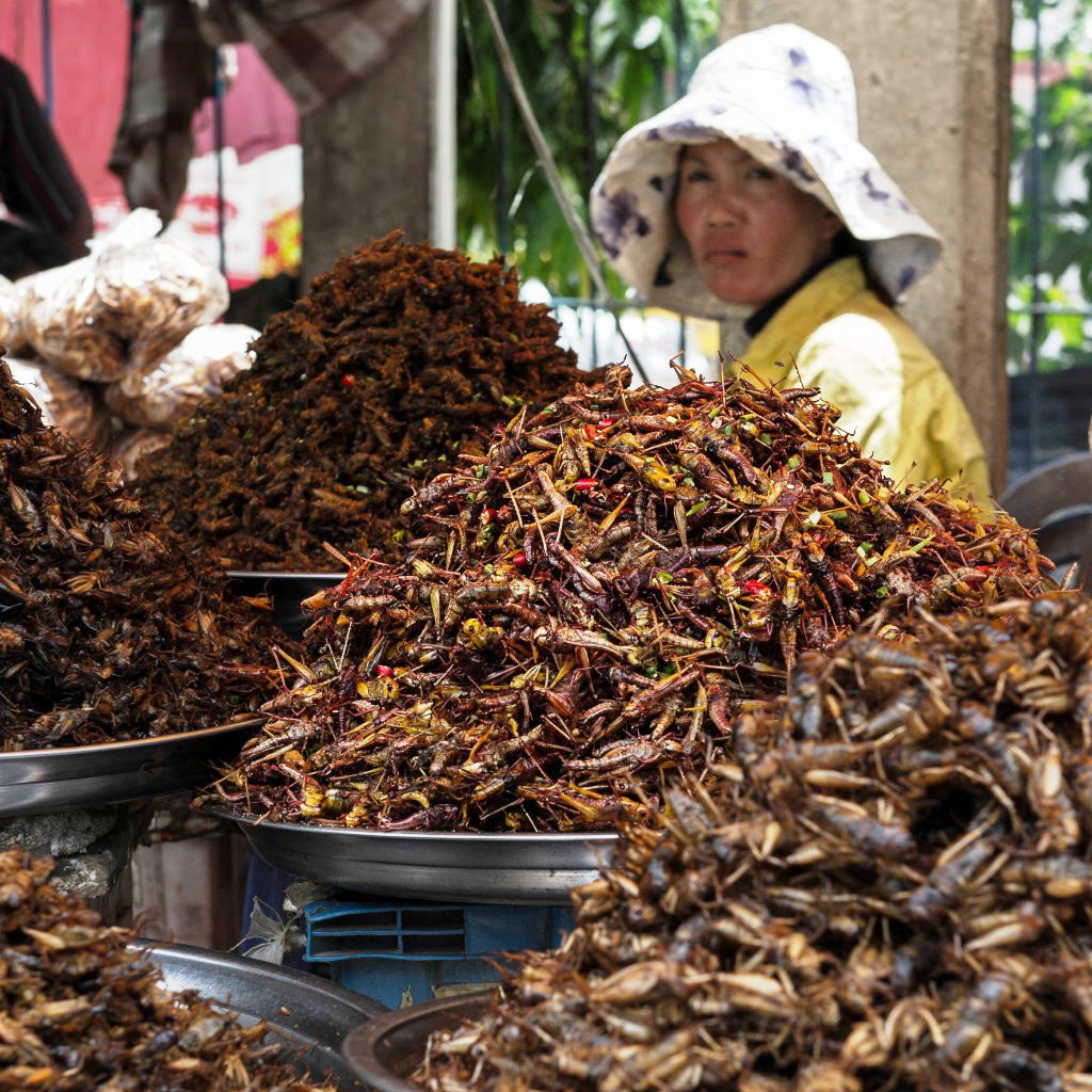 Eating Bugs in Siem Reap, Cambodia