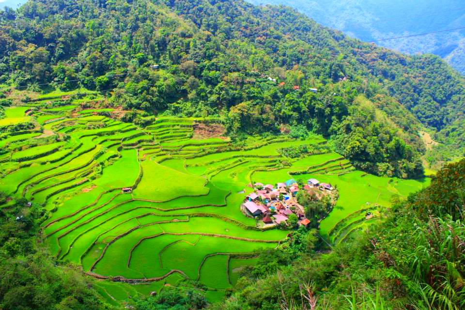 Bangaan Rice Terraces: A UNESCO World Heritage Site in Ifugao
