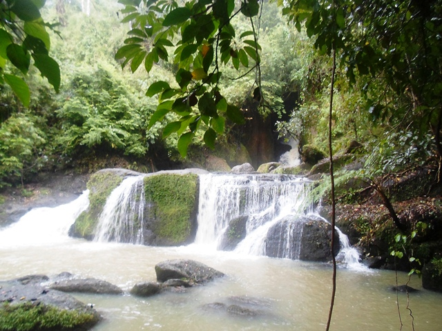 Talay Falls: A Must-See in Luisiana, Laguna