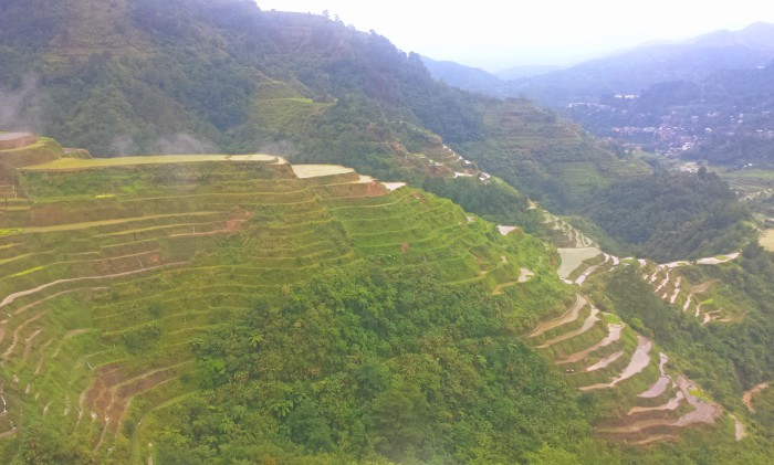 Banaue Rice Terraces in Ifugao: Beyond Textbooks