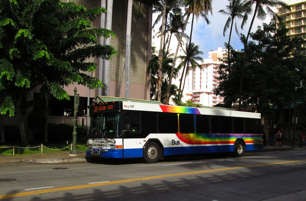 Hawaii Bus Travel Guide