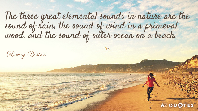 105 Best Beach Quotes Inspirational